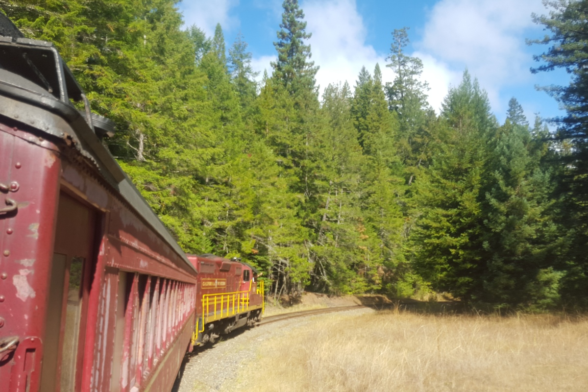 I Hear the Train a Comin' … – Inspired Solo Travel for Older